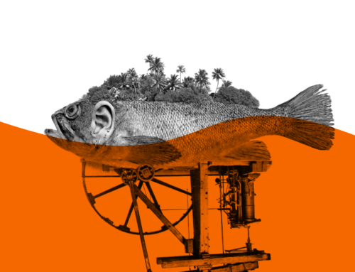 Freier Fisch
